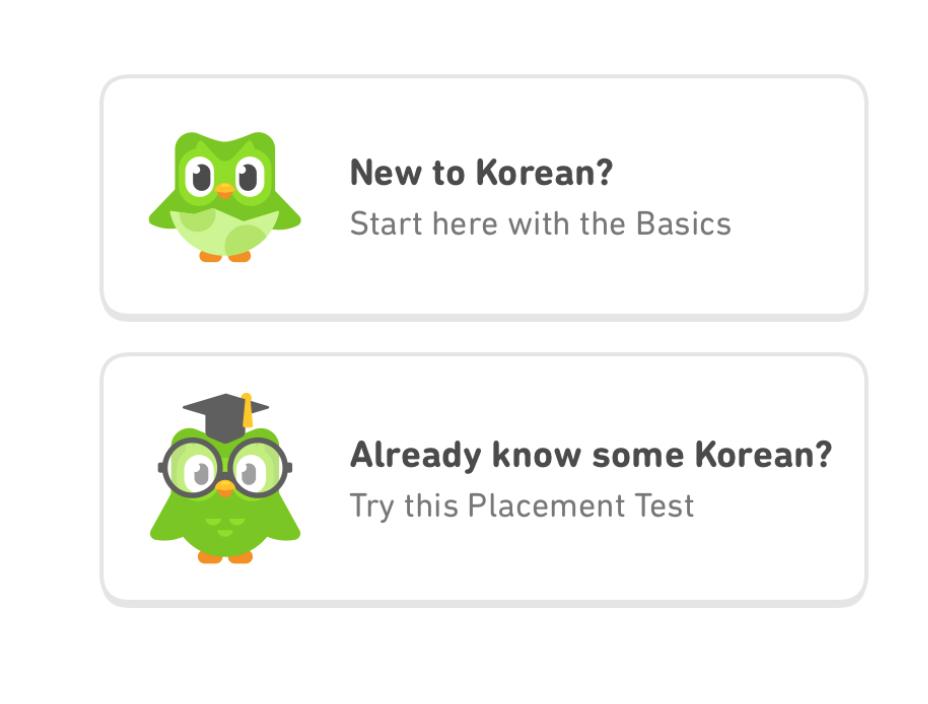 Example by Duolingo